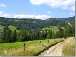 Wisła Jawornik - szlak spacerowy