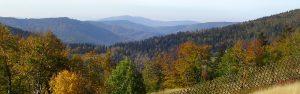 Jesień w Beskidach