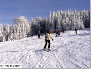 Na nartach w Szczyrku