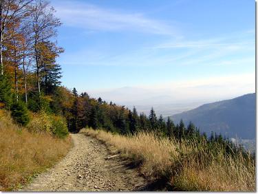Szlak w Szczyrku