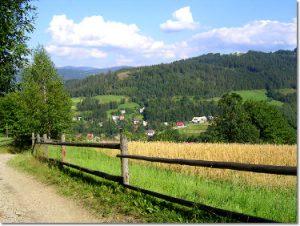 Szlak w Wiśle Jawornik