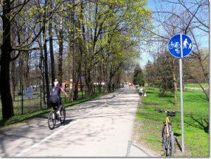 Ścieżka rowerowa w Ustroniu