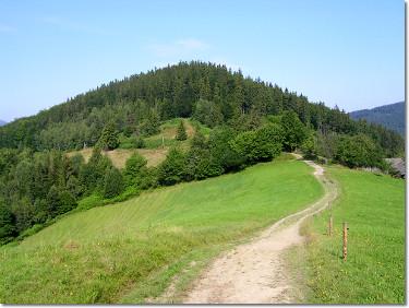 Zielony szlak na Orłową