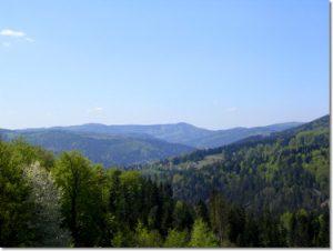 Zajazd na Zielonym - widok