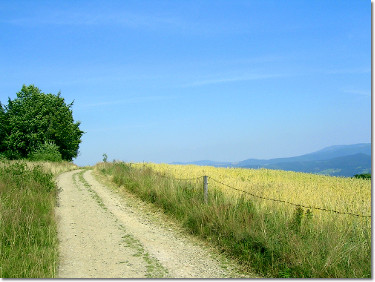 Szlak na Cieślar