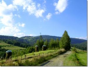 Wisła Jawornik - niebieski szlak