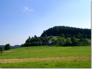 Łąka przy niebieskim szlaku