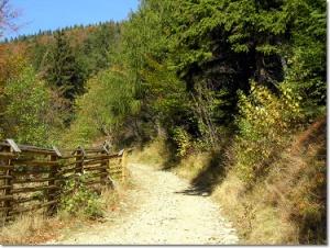 Niebieski szlak na Klimczok