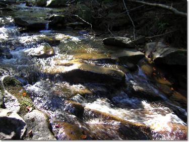 Potok przy szlaku na Baranią Górę