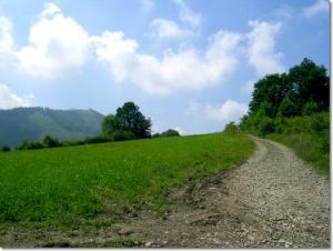 Żółty szlak na Małą Czantorię